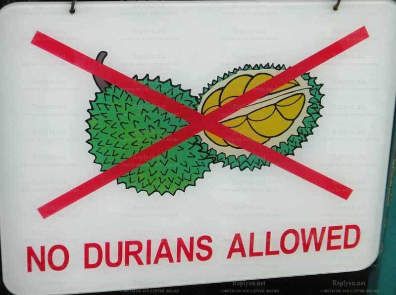 Табличка NO Durian